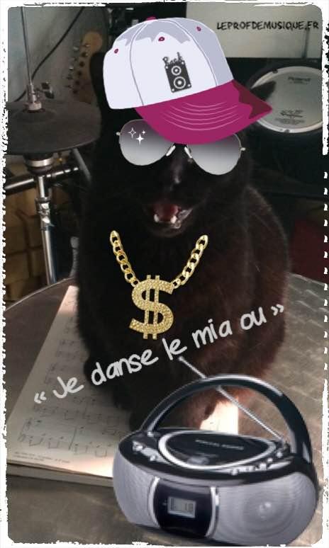 danse le miaou